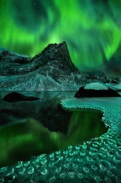 Aurora borealis reflected on a frozen lake in the Yukon Territory