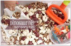sensory: Dinosaur Dig Sensory Bin