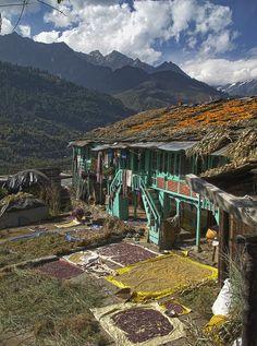 Bashisht, Himachal Pradesh, India Beautiful Places To Visit, Wonderful Places, Places To Travel, Places To See, Travel Around The World, Around The Worlds, Amazing India, India And Pakistan, India Travel