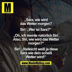 Schmunzeln Dumm Spruche Zitate Lustige Spruche Lustige Bilder Humor Deutsch