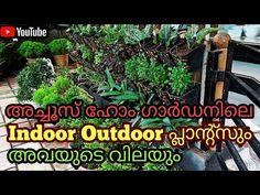 Indoor Outdoor Plants & Their Price   Achoos Home Garden Tirur   Malayalam - YouTube Outdoor Plants, Indoor Outdoor, Garden Online, Home And Garden, Youtube, Sun Plants, Youtubers, Garden Plants, Inside Outside