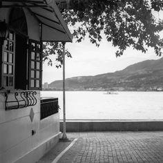Summer getaway - Shot on Kodak Portra 400 BW at EI 400 Black and white negative film in 120 format shot as 6x6 Chromogenic film   More at:  https://emulsive.org/photography/medium-format/summer-getaway-shot-on-kodak-portra-400-bw-at-ei-400-120  Filed under:  #film, #filmphotography, #believeinfilm, #2017December, #6X6, #BlackAndWhiteNegativeFilm, #ChromogenicFilm, #EMULSIVEDailyPhoto, #Hasseblad2000FCW, #Hasselblad, #HasselbladPlanarF80MmF28, #Kodak, #KodakPortra40
