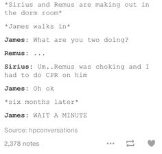I don't think James was as oblivious as Harry, though. I bet he was the very opposite, and new Remus and Sirius had feelungs for each other before they even knew it themselves
