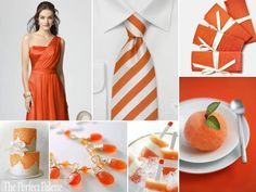 {Tangerine Tango}: A Palette of Orange   White