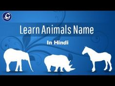 Learn Animals Name In Hindi Learn Hindi, Hindi Video, Learning Resources, Toddler Activities, Languages, Content, Teaching, Videos, Youtube