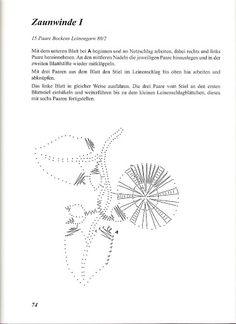 Цветы – Аня Журавлева – Webová alba Picasa