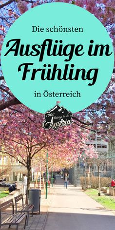 Innsbruck, Vienna, Austria, Thing 1, Blog, Traveling, Lifestyle, Fitness, Snow Mountain