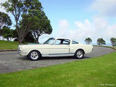 1966 Ford Shelby Mustang GT-350 S