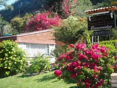 Hotel San Gil Santander Colombia | Jardín frontal Entrada http://sangil1.wix.com/hostalfarodelfonce