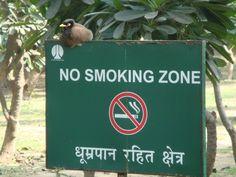 My India . Delhi
