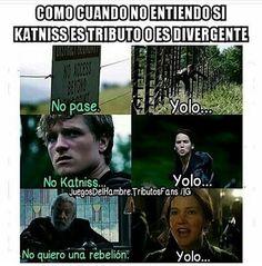 Yolo!!!
