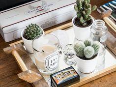 Cactus Succulents Diptyque Candle