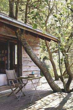 Wood house ➰