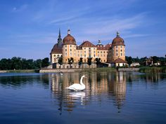 Famous Castles In Germany | Moritzburg Castle near Dresden, Germany | World Famous Places ...