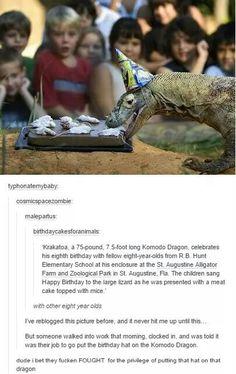 Krakatoa, an 8 year old Komodo dragon, celebrates his birthday with other fellow human 8 year olds
