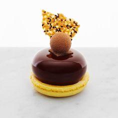 Passionfruit & Chocolate Petit Gâteau [ passionfruit crème, sesame seed tuile, macaron, tropical truffle] | Bibelot #TrueFoodies #fortruefoodiesonly Get the app!