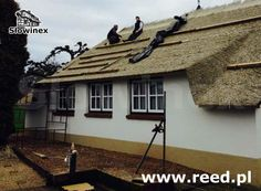 Another project with synthetic reed.  Replaced of an old roof with synthetic reed