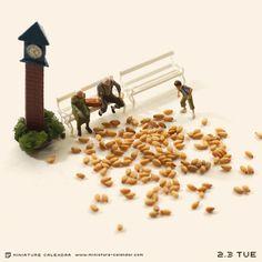 Pigeon feeding. Miniature photography