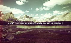 adopt the pace of nature/her secret is patience