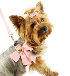 Fancy Dog Harness My Sweet Bow Pink With Swarovski Crystal Designer Harnesses
