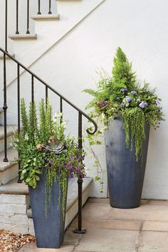 A planter in a faux-lead finish is a timeless choice, but the cylindrical shape of these tall fiberclay urns gives them a really clean feel. Having a different color or texture helps the color pop.Here, string of pearls creates plenty of textural drama and purple calibrachoa and blue ageratum add just the right dose of color.
