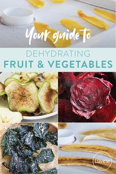 Your guide to dehydrating fruit & vegetables Dehydrated Vegetables, Dehydrated Food, Fruits And Vegetables, Biltong, Cinnamon Chips, Natural Preservatives, Dehydrator Recipes, Food Science, Granny Smith
