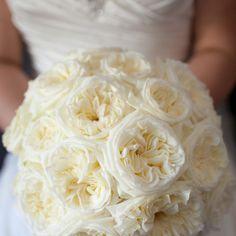 Cream David Austin bridal bouquet #sunpetalsflorist