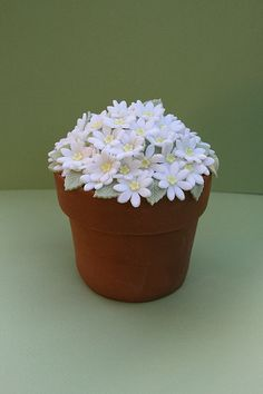 flower pot cake - My favorite flower - I want this for my birthday cake. Please!!!!