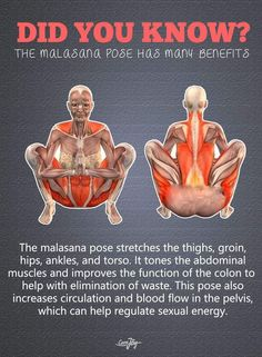 Get a Sexy Body Doing Yoga - Masalaana Pose. , Get a Sexy Body Doing Yoga - Yoga Fitness. Introducing a breakthrough program that melts away flab and reshapes your body in as little as one hour a week! Fitness Workouts, Yoga Fitness, Fitness Hacks, Fitness Motivation, Physical Fitness, Mens Fitness, Health Benefits, Health Tips, Health And Wellness