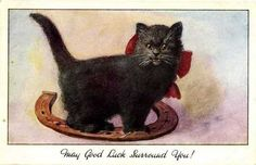 CatPostcards017s.jpg (453×292)