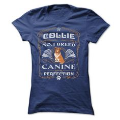 COLLIE NO 1 BREED CANINE PERFECTION T-Shirts, Hoodies. BUY IT NOW ==► https://www.sunfrog.com/Pets/COLLIE-NO-1-BREED-CANINE-PERFECTION-T-SHIRTS-Ladies.html?id=41382