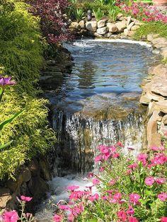 Relaxing backyard garden and waterfalls