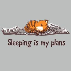 Sleeping Is My Plans T-Shirt TeeTurtle