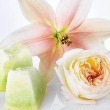 """""""Kukkia"""" Forbidden Fantasy """"Kiss"""" Ensimmäisen hellän suudelman odotus. Raikkaat kukkaistuoksut yhdistyvät meripihkan ja santelipuun kiihkeään lämpöön. Canning, Fruit, Live, Fantasy, Home Canning, Conservation"""