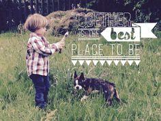 #dogs #tiere #tierfotos #tierfreund #tierfreunde #tierfotografie #photo #photos #puppys #puppy #puppysmile #puppystagram #sweet #sweetheart #dogs #germany #hunde #hundefoto #hundefotograf #hundefotografie #love# boston terrier #bostonterrier