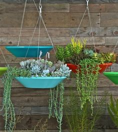 Best Hanging Planters: Flora Grubb, M.F.E.O. & 6 More — Maxwell's Daily Find 04.06.15