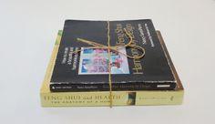 2 Feng Shui Books by Nancy SantoPietro...