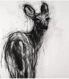 Pin by anne uphoff on drawing in 2019 animal drawings, artist sketchbook, c Animal Paintings, Animal Drawings, Dog Drawings, Drawing Animals, Bee Pictures, Toddler Art Projects, Organic Art, Deer Art, Artist Sketchbook