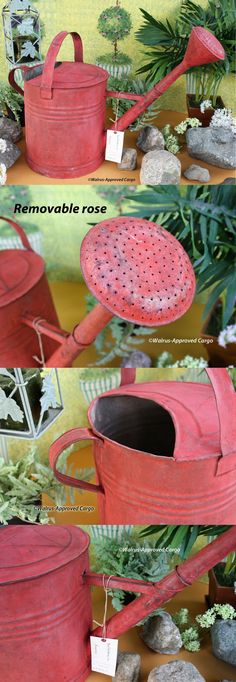 Watering Cans 20547: Williams-Sonoma Huge Vintage Watering Can -Nwt- Sprinkle A Lot Of Rustic Décor! -> BUY IT NOW ONLY: $94.5 on eBay!