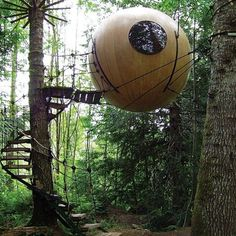 Free Spirit Spheres, Vancouver Island, BC: Meet Eryn (pictured) and Eve, two oversize orbs made from Sitka spruce and yellow cedar that dangle from conifer trees like spiders from a web in a Vancouver Island rain forest. Free Spirit Spheres  treehouses sway ever so slightly in a breeze, and were built for guests of the curious and ecologically minded sort. An outdoor composting toilet is a fair trade for the utter bird-singing peace that comes with hanging in a grove of cedar, fir, and ...