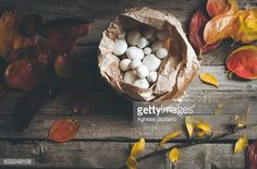 Stock Photo : Autumn vibs