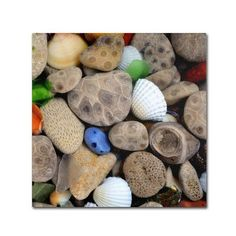 """Trademark Art """"PetoskeyStones V"""" by Michelle Calkins Photographic Print on Wrapped Canvas Size: 35"""" H x 35"""" W x 2"""" D"""