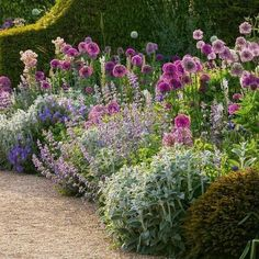 Garden King, Garden Club, Cottage Garden Design, Cottage Garden Borders, Rose Garden Design, Cottage Garden Plants, Garden Design Plans, Lush Garden, Garden Path