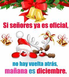 Si señores ya es oficial, no hay vuelta atrás, mañana es diciembre. Diciembre es el duodécimo y último mes del año en el calendario gregoriano y tiene 31 d