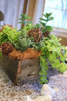 One of the very first plants to go into my garden each year are my herbs! There is something so therapeutic about going into the gar. Herb Garden, Vegetable Garden, Planter Garden, Old Wooden Boxes, Wood Boxes, Wooden Crates, Herb Centerpieces, Pots, Wild Edibles