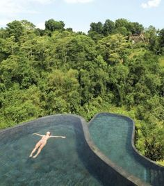 #hoteltrip #bali   Whether you're seeking romance or a cultural escape from the world, here's where to find it.   At the infinity pool of Ubud Hanging Garden in Bali of Indonesia.   http://www.hoteltrip.com/hotels/Indonesia/Bali/Ubud_Hanging_Gardens.html