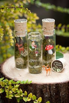 Put together some cute woodland scenes in glass jars.