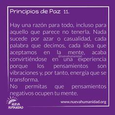 (20) SocialGest Decir No, Calendar, The Little Prince, Peace, Words, Thoughts, Life Planner