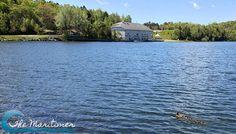 Toddler Time: Rockwood Park, Saint John - The Maritimer Saint John, New Brunswick, Saints, Lily, Park, Places, Travel, San Juan, Viajes