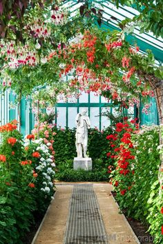 Posted By The Happiness Of Living Follow My Blog for More Beautiful & Inspirational Pics dyingofcute: Royal Greenhouse, Belgium